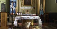Kościół Podwyższenia Krzyża Świętego w Kazimierzy Wielkiej
