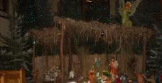 Bazylika św. Marcina w Pacanowie - Sanktuarium Jezusa Konającego