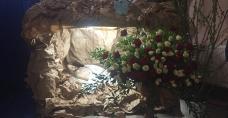 Sanktuarium Matki Bożej w Pinczowie