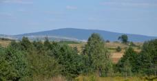 Widok ze Szlaku na Łysicę